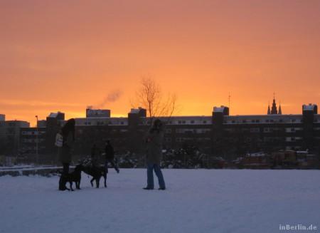 Mauerpark im Winter
