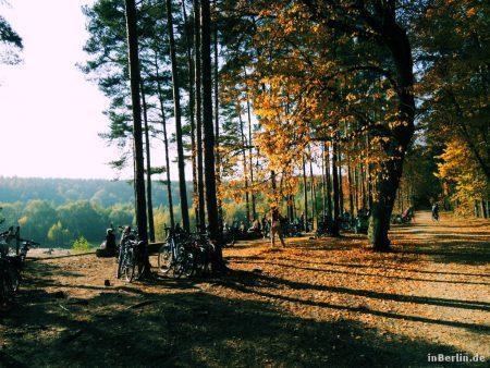 Herbst im Grunewald