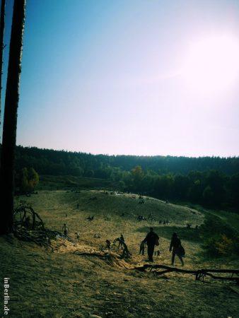 Herbst im Grunewald (Sandgrube)