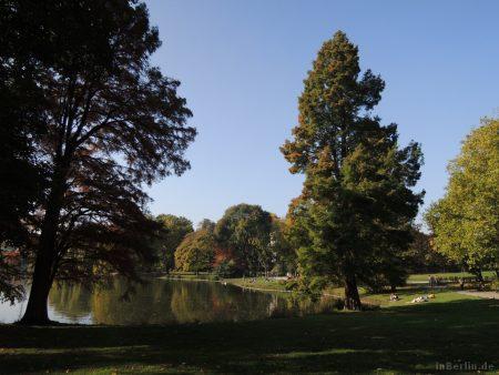 Herbst am Lietzensee