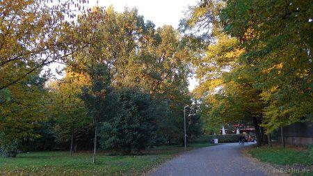 Herbst im Berliner Tiergarten